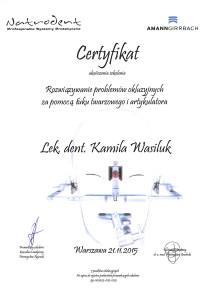 SKMBT_C25315112415310